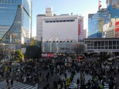 article 29-photo 12-30 12 2018_shibuya crossroads