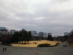 article 33-photo 23-17 01 2019_imperial palace_garden