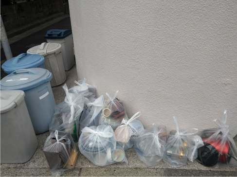 Article 36-photo 18-06 02 2019_Garbage selection