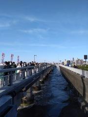 Article 41-photo 19-15 03 2019_Enoshima_Bridge