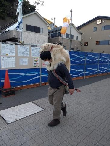 Article 41-photo 22-15 03 2019-Enoshima