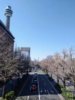 Article 42-photo 7-19 03 2019_Yokohama
