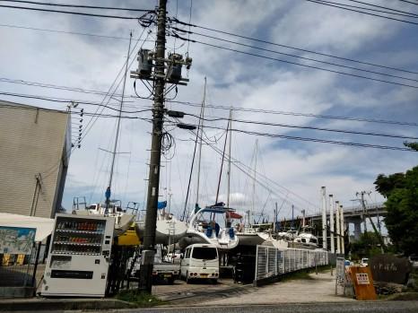 Article 50-photo 19-08 05 2019_Yogashima isle