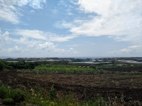 Article 50-photo 35-08 05 2019_Miura peninsula