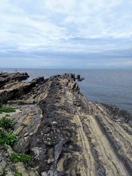 Article 50-photo 5-08 05 2019_Jogashima isle