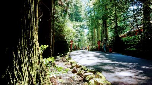 Article 57-photo 15-18 06 2019_Lac Ashi_Hakone-jinja