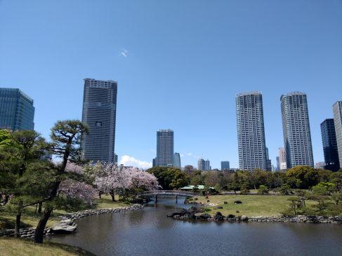 Article 58-photo 11-25 06 2019_Hama Rikyu_Tokyo