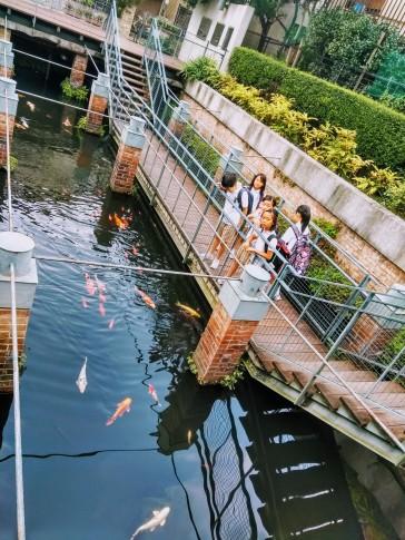 Article 61-photo 10-26 08 2019_Vestiges aqueduc Alfred Gérard_Motomachi park_Yokohama