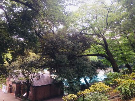Article 61-photo 3-26 08 2019_Motomachi park swimming pool_Yokohama
