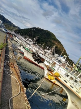 Article 72-photo 21-29 10 2019_Shimoda harbor
