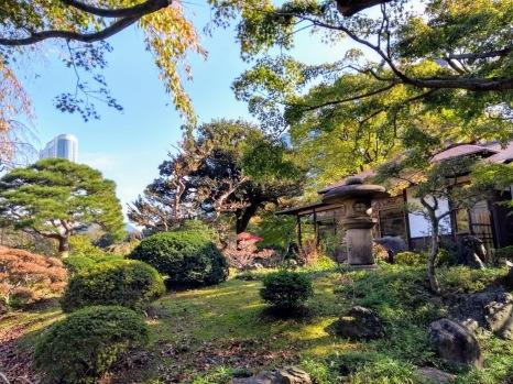 Article 75-photo 28-13 11 2019_Koishikawa Kōraku-en_Tokyo