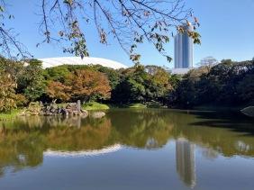 Article 75-photo 9-13 11 2019_Koishikawa Kōraku-en_Tokyo
