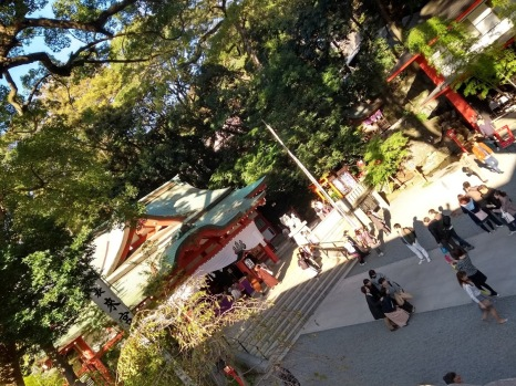 Article 77-photo 19-28 11 2019_Kinomiya shrine_Atami