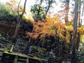 Article 79-photo 9-18 12 2019_Tokeiji temple_Kamakura
