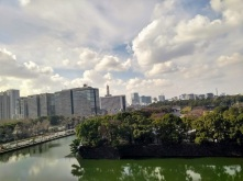 Article 81-photo 2-22 01 2020-Imperial palace garden from Idemitsu museum
