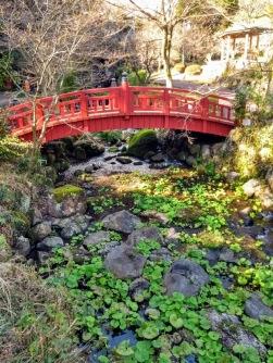 Article 83-photo 17-30 01 2020_Baien park_Atami
