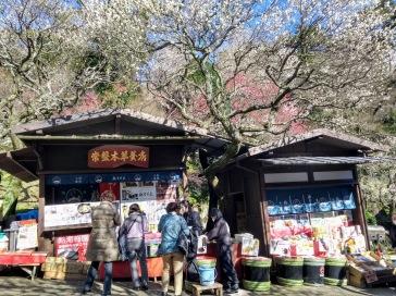 Article 83-photo 22-30 01 2020_Baien park_Atami