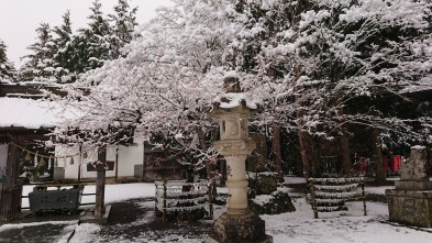 Article 93-photo 12-14 02 2020_Kawaguchiko_Fuji Ômuro Sengen