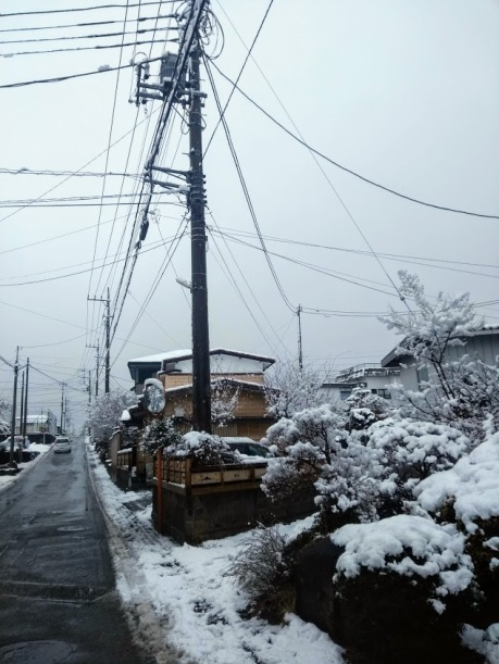 Article 93-photo 25-14 02 2020_Kawaguchiko