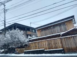 Article 93-photo 28-14 02 2020_Kawaguchiko