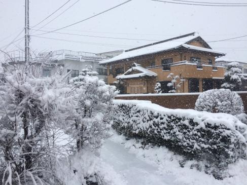 Article 97-photo 3-30 03 2020_Kawaguchiko