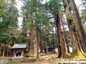 Article 100-photo 5-07 04 2020_Kawaguchi Asama shrine