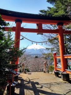 Article 101-photo 4-08 04 2020_Chureito_Kawaguchiko