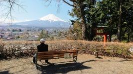 Article 101-photo 5-08 04 2020_Chureito_Kawaguchiko