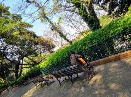 Article 102-photo 8-13 04 2020_Motomachi park_Yokohama