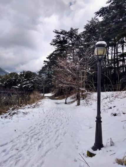 Article 98-photo 17-01 04 2020_Kawaguchiko