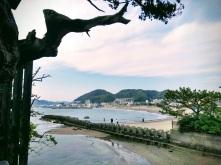 Article 111-photo 13-26 05 2020_Morito shrine_Hayama_01 05 2020