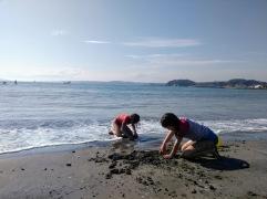 Article 111-photo 25-26 05 2020_Morito beach_Hayama_17 05 2020