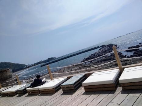 Article 111-photo 7-26 05 2020_Under the palmo_Morito beach_Hayama_01 05 2020