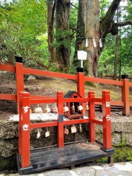Article 114-photo 20-09 06 2020_Around Futarasan shrine_Nikko