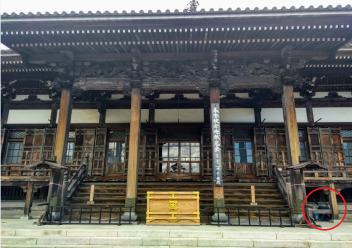 Article 114-photo 23-09 06 2020_Minobu Kuonji_16 03 2020