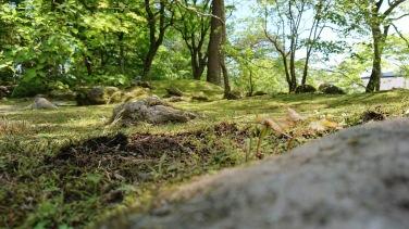 Article 114-photo 9-09 06 2020_Rinnoji garden_Nikko