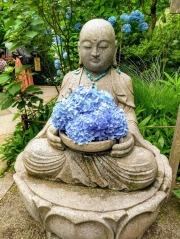 Article 117-photo 1-22 06 2020_Temple Meigetsu-in_Kamakura