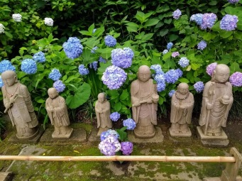 Article 117-photo 12-22 06 2020_Temple Meigetsu-in_Kamakura