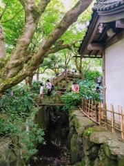 Article 117-photo 2-22 06 2020_Temple Meigetsu-in_Kamakura