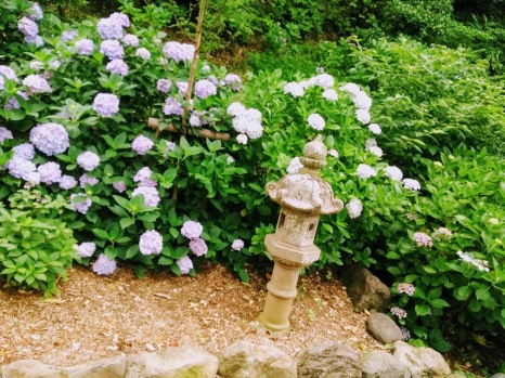 Article 117-photo 33-22 06 2020_Sanctuaire shinto_Vers Daibutsu_Kamakura