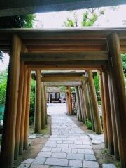 Article 117-photo 35-22 06 2020_Sanctuaire Zeniarai Benten_Vers Daibutsu_Kamakura