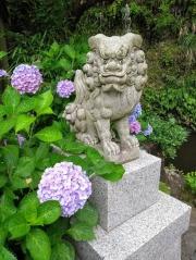 Article 117-photo 36-22 06 2020_Sanctuaire Zeniarai Benten_Vers Daibutsu_Kamakura