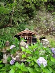 Article 117-photo 38-22 06 2020_Sanctuaire Zeniarai Benten_Vers Daibutsu_Kamakura