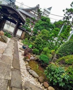 Article 118-photo 13-26 06 2020_Reisen-ji_Hiroo_Tokyo