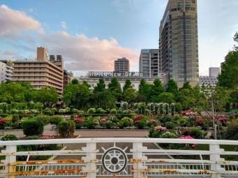 Article 121-photo 8-08 07 2020_Hotel New Grand_Yamashita park_Yokohama